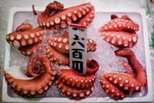 Японские морепродукты могут быть радиоактивны