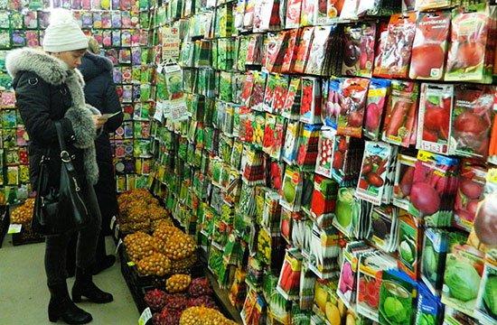 Специалисты магазина Greensad о том, как правильно выбирать семена для посадки