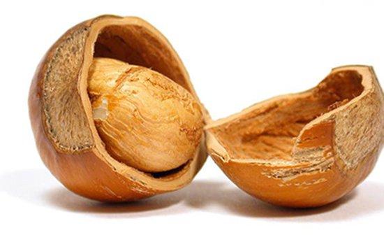 Орехи продлевают жизнь